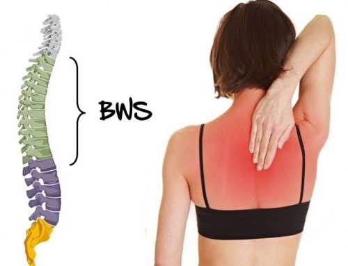 Rückenschmerzen? Fokus: Brustwirbelsäule